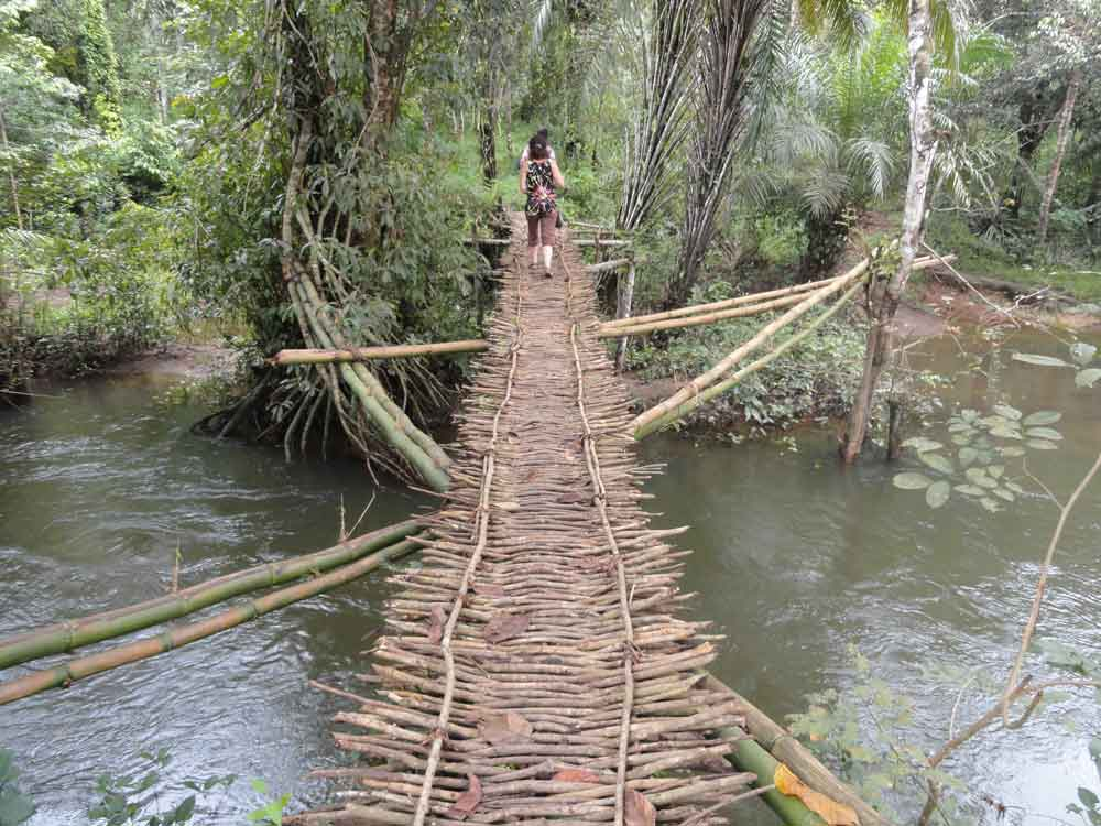 Pont traditionnel à l'entrée du village en Guinée