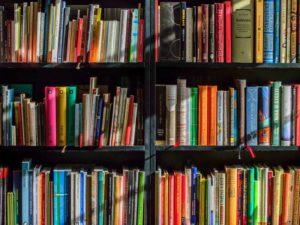 Premier voyage en Guinée, première distribution de livres