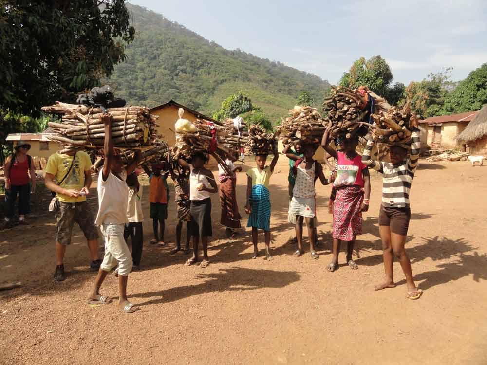 Transport du bois en Guinée